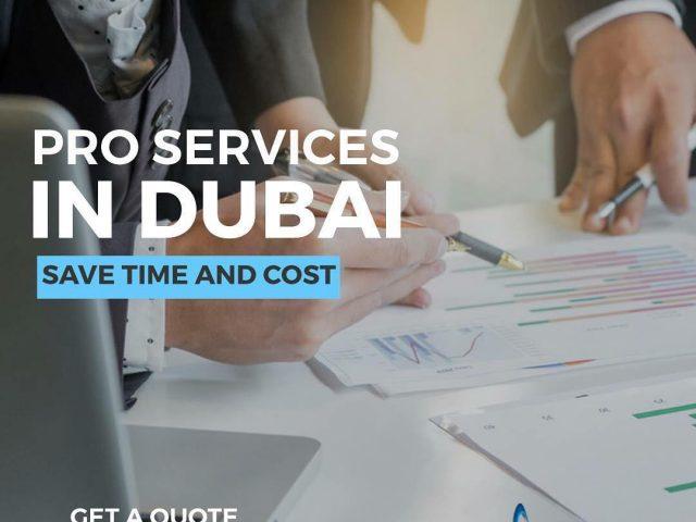 corporate pro services